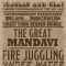 Poster for The Great Mandavi Show